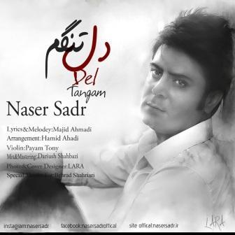 دانلود آهنگ جدید ناصر صدر بنام دلتنگم
