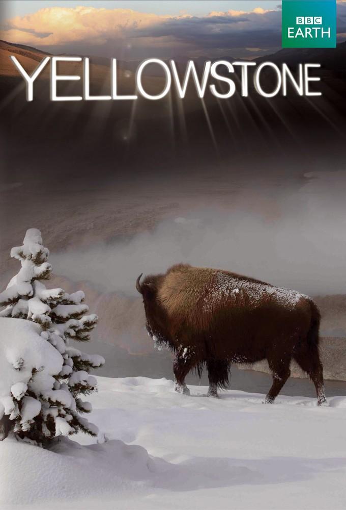 دانلود مستند پارک ملی یلوستون Yellowstone 2009